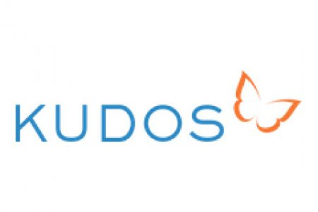 Get Kudos For Your Work