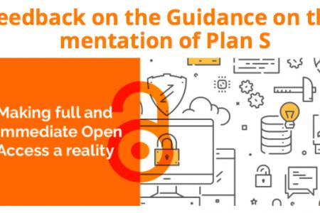 Plan S: A public consultation